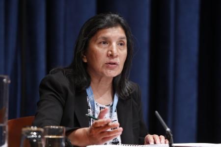Rashida Manjoo (c) UN Photo/Paulo Filgueiras