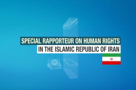rapporteur-video